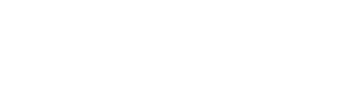 accelean management consultants